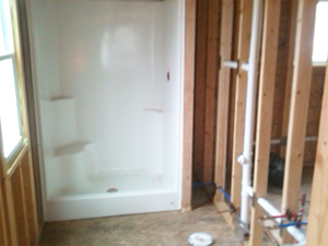Bathroom Remodel - House Springs, MO